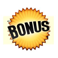 Bonus Burst Badge Orange