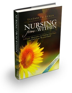 nursing from within book